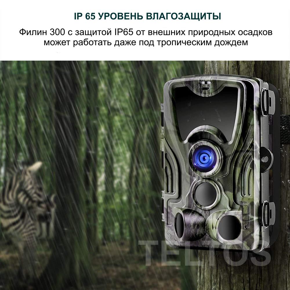 Фотоловушка Филин 300