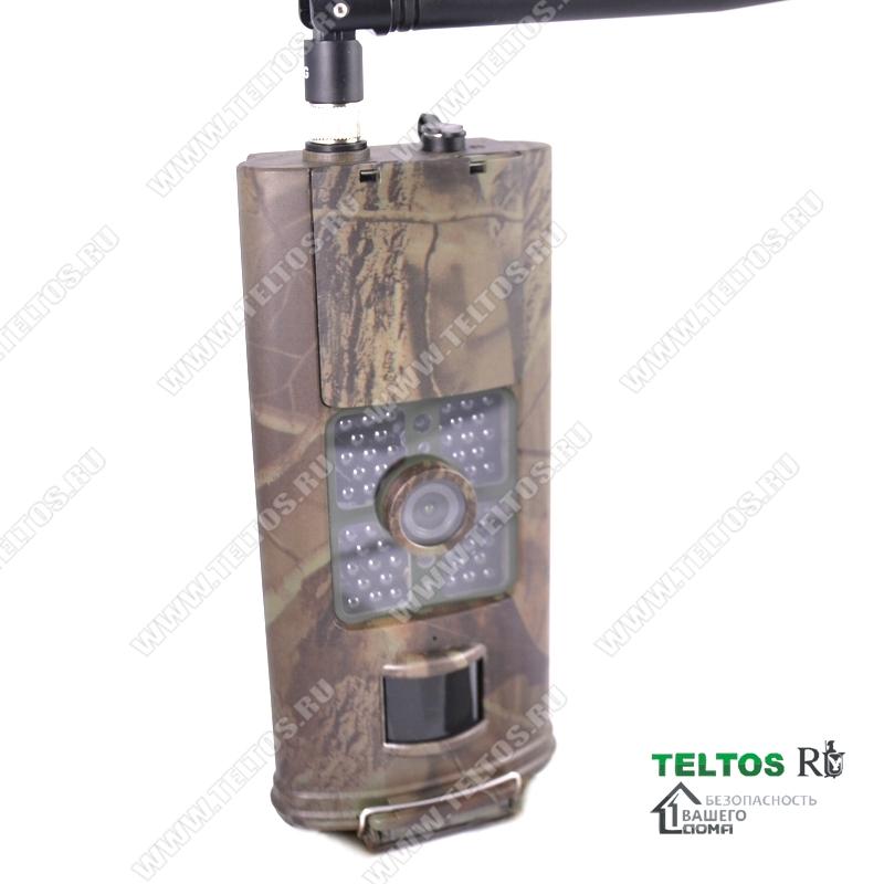 лесная GSM камера с русским меню